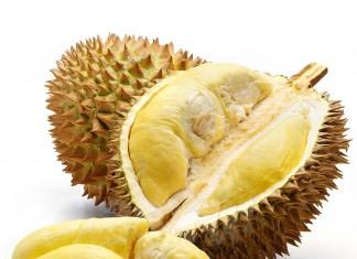 Foto: Durian Kelompok Tani Riau Lestari