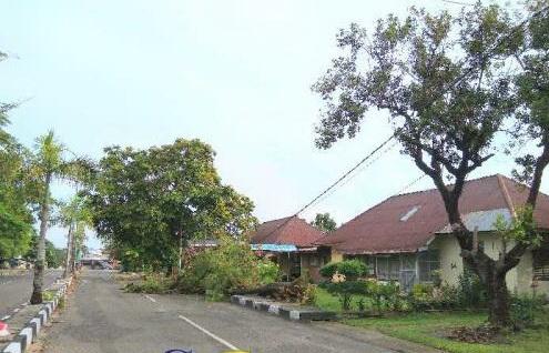 sebuah pohon di Jalan WR Supratman tumbang dan menimpa kabel aliran listrik.
