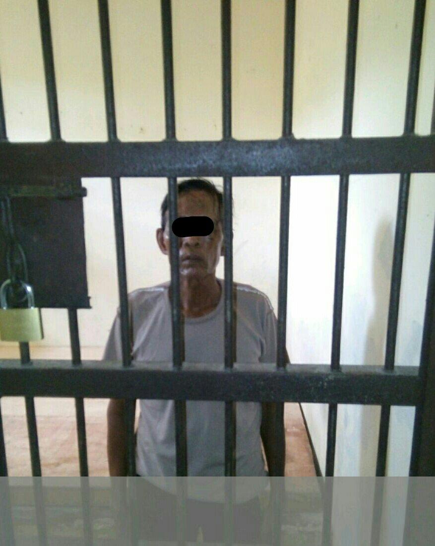 Seorang kakek berusia 70 tahun Ditangkap Karena Melakukan pembacokan Anggota Satpol PP Aceh Timur, pada, Minggu 30 /07/17. Foto: Humas Polres Aceh Timur