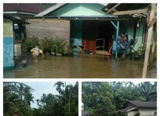 Banjir di Dua Desa kecmatan Tenggulun ,Kabupaten Aceh Tamiang FOTO :Rudy Chand