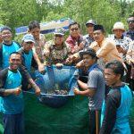 Bupati Irwan Nasir saat Panen Raya ikan Keli