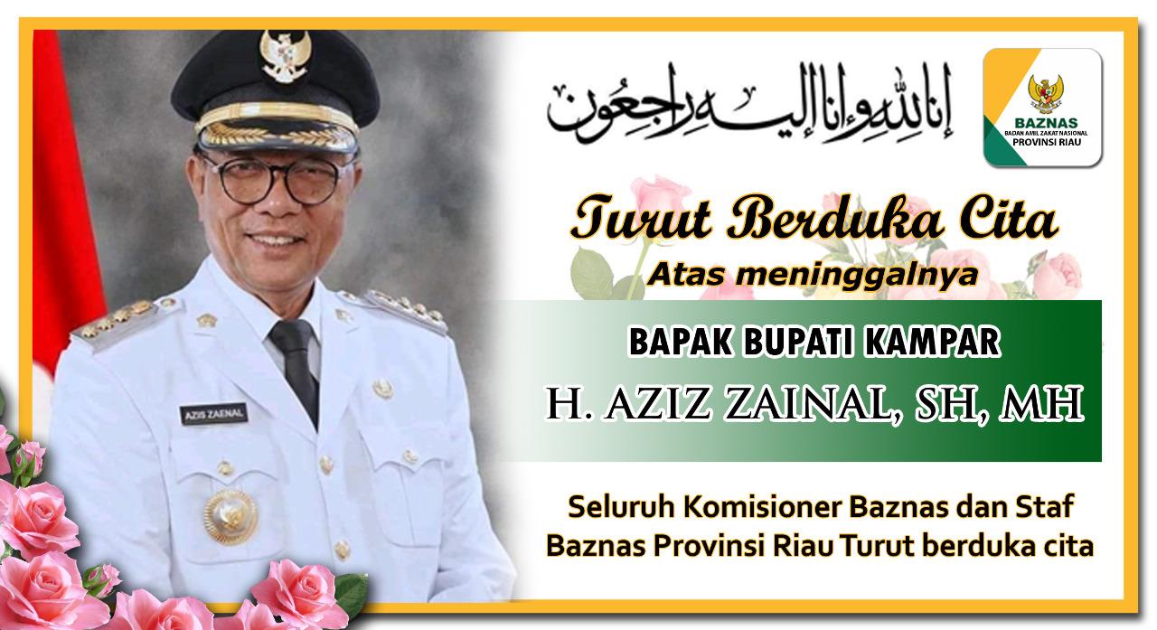 Iklan BAZNAS Provinsi Riau