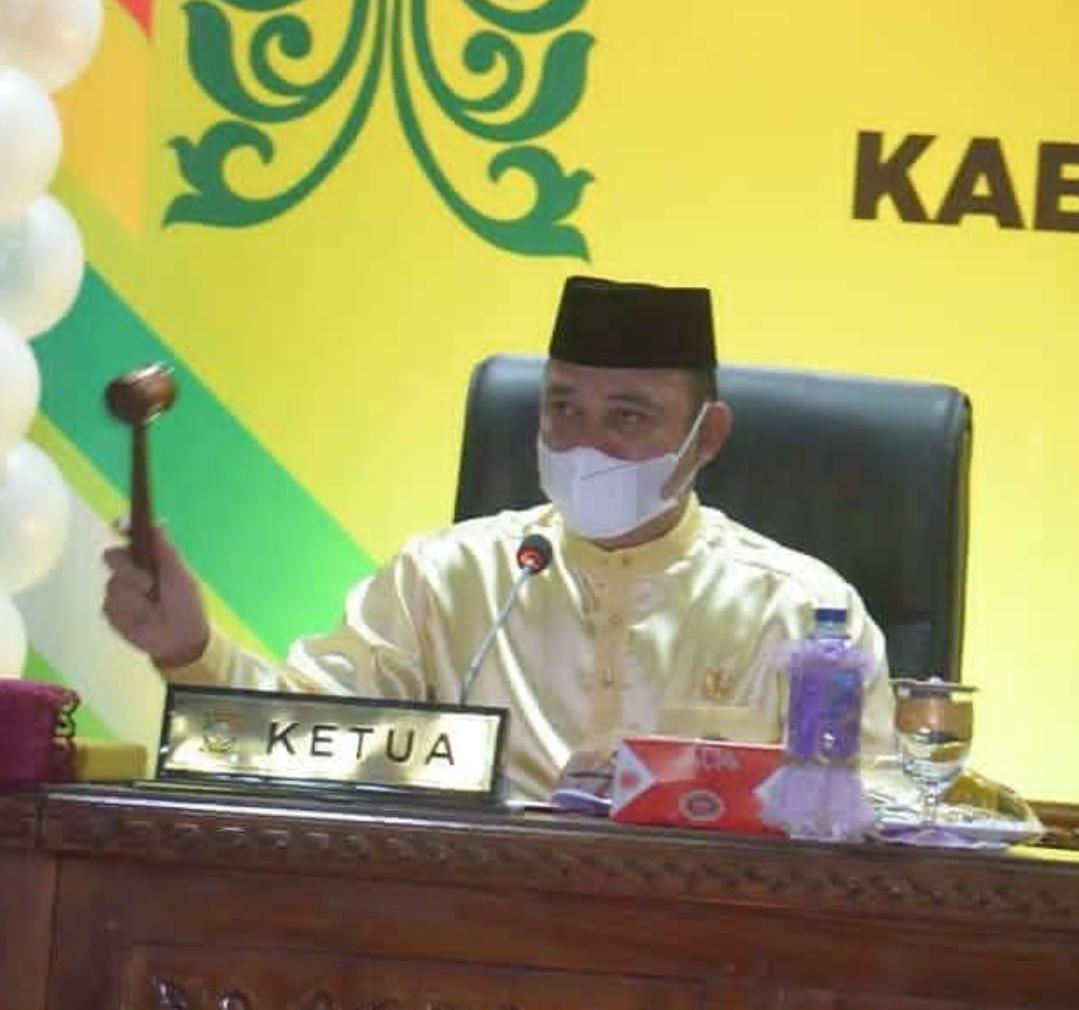 Ketua DPRD Kabupaten Kampar saat acara Hut Kampar